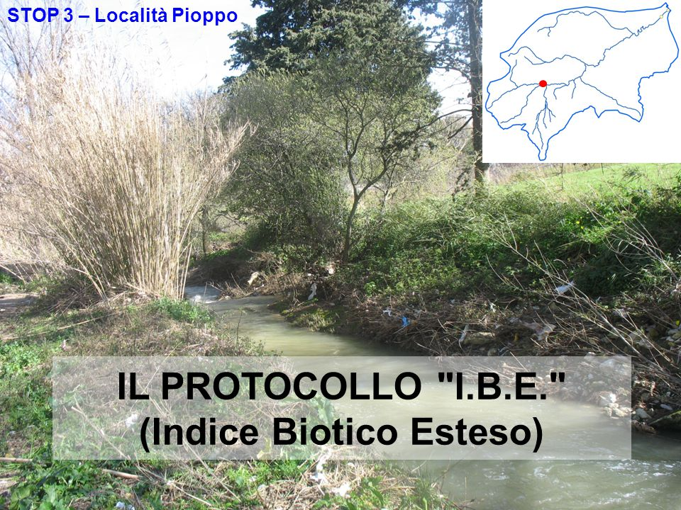 IL PROTOCOLLO I.B.E. (Indice Biotico Esteso)