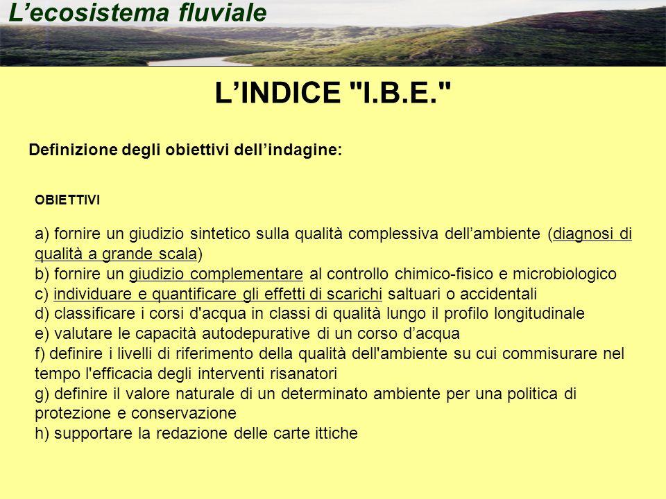 L'INDICE I.B.E. L'ecosistema fluviale