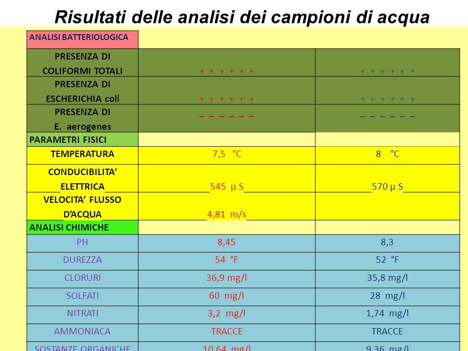 Risultati delle analisi dei campioni di acqua