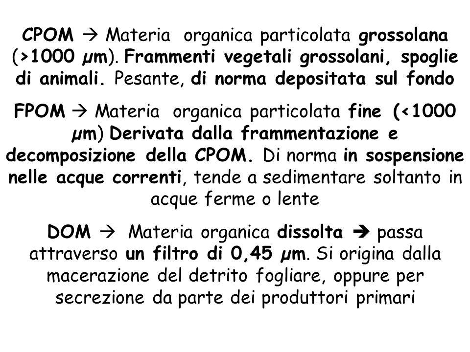 CPOM  Materia organica particolata grossolana (>1000 µm)