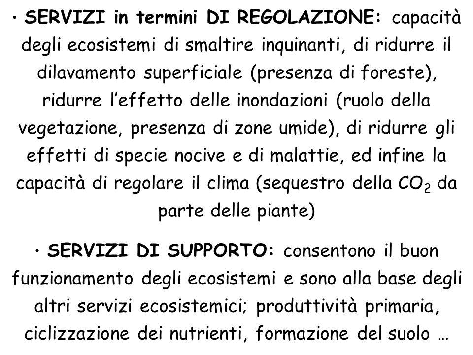 SERVIZI in termini DI REGOLAZIONE: capacità degli ecosistemi di smaltire inquinanti, di ridurre il dilavamento superficiale (presenza di foreste), ridurre l'effetto delle inondazioni (ruolo della vegetazione, presenza di zone umide), di ridurre gli effetti di specie nocive e di malattie, ed infine la capacità di regolare il clima (sequestro della CO2 da parte delle piante)