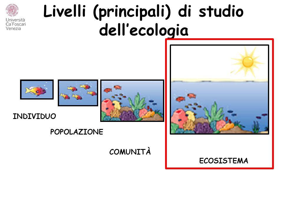 Livelli (principali) di studio dell'ecologia