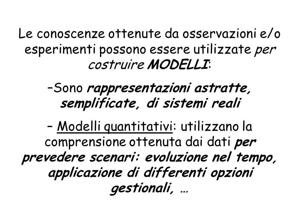 Sono rappresentazioni astratte, semplificate, di sistemi reali