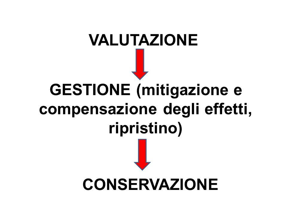 GESTIONE (mitigazione e compensazione degli effetti, ripristino)