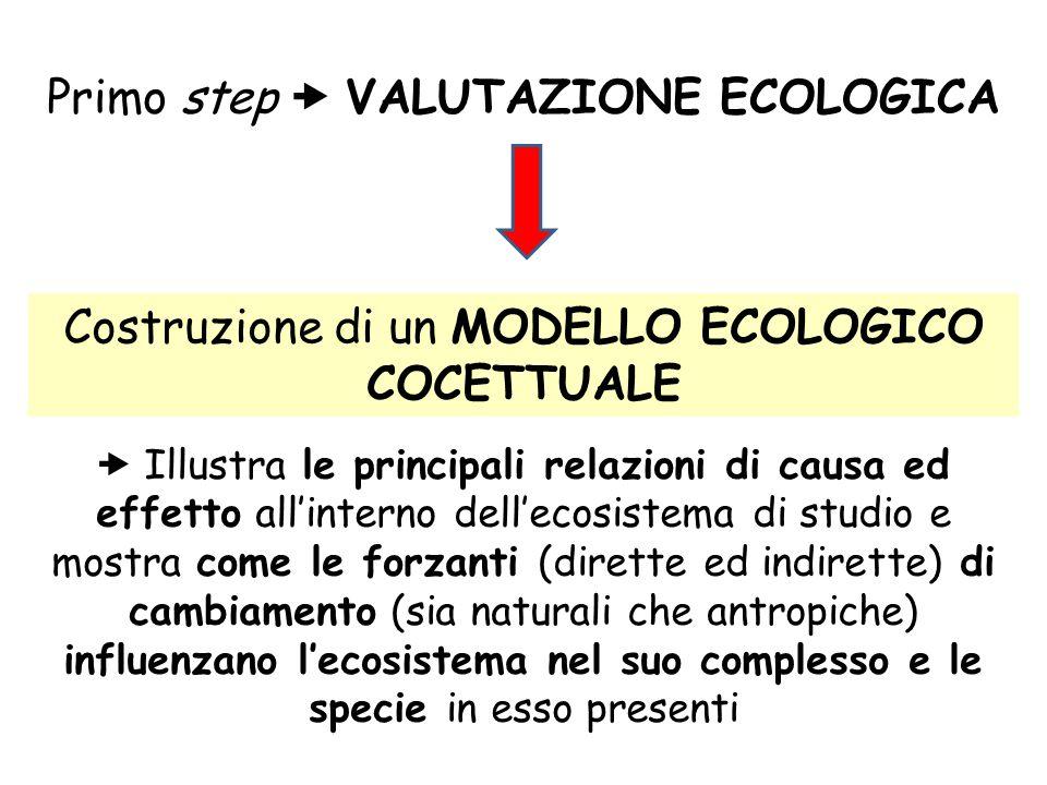 Primo step  VALUTAZIONE ECOLOGICA