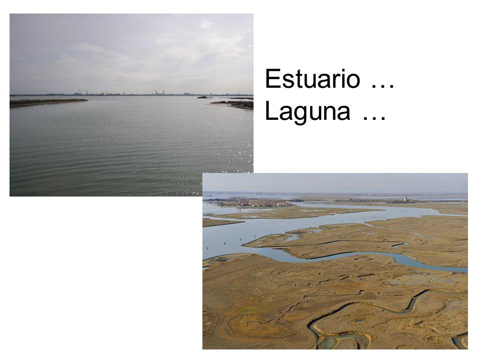 Estuario … Laguna …