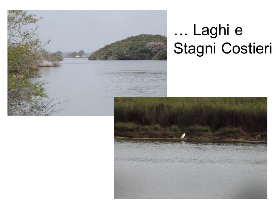 … Laghi e Stagni Costieri