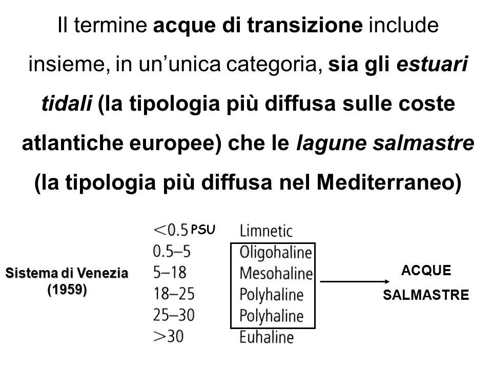 Il termine acque di transizione include insieme, in un'unica categoria, sia gli estuari tidali (la tipologia più diffusa sulle coste atlantiche europee) che le lagune salmastre (la tipologia più diffusa nel Mediterraneo)