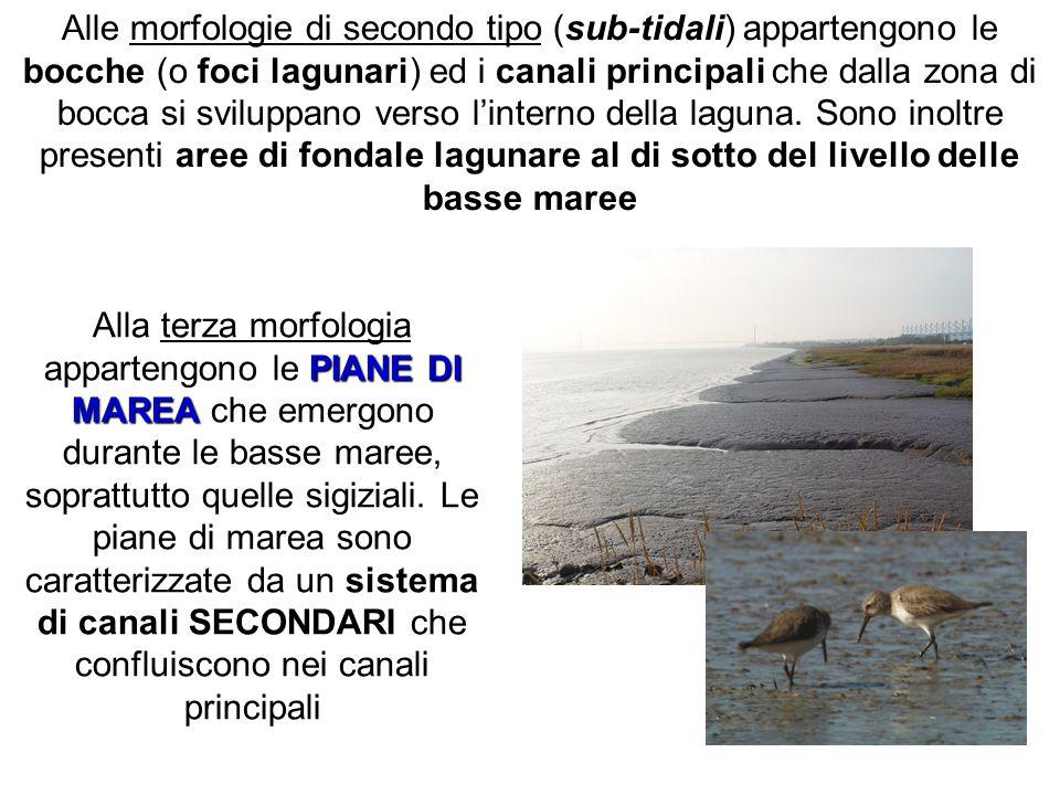 Alle morfologie di secondo tipo (sub-tidali) appartengono le bocche (o foci lagunari) ed i canali principali che dalla zona di bocca si sviluppano verso l'interno della laguna. Sono inoltre presenti aree di fondale lagunare al di sotto del livello delle basse maree