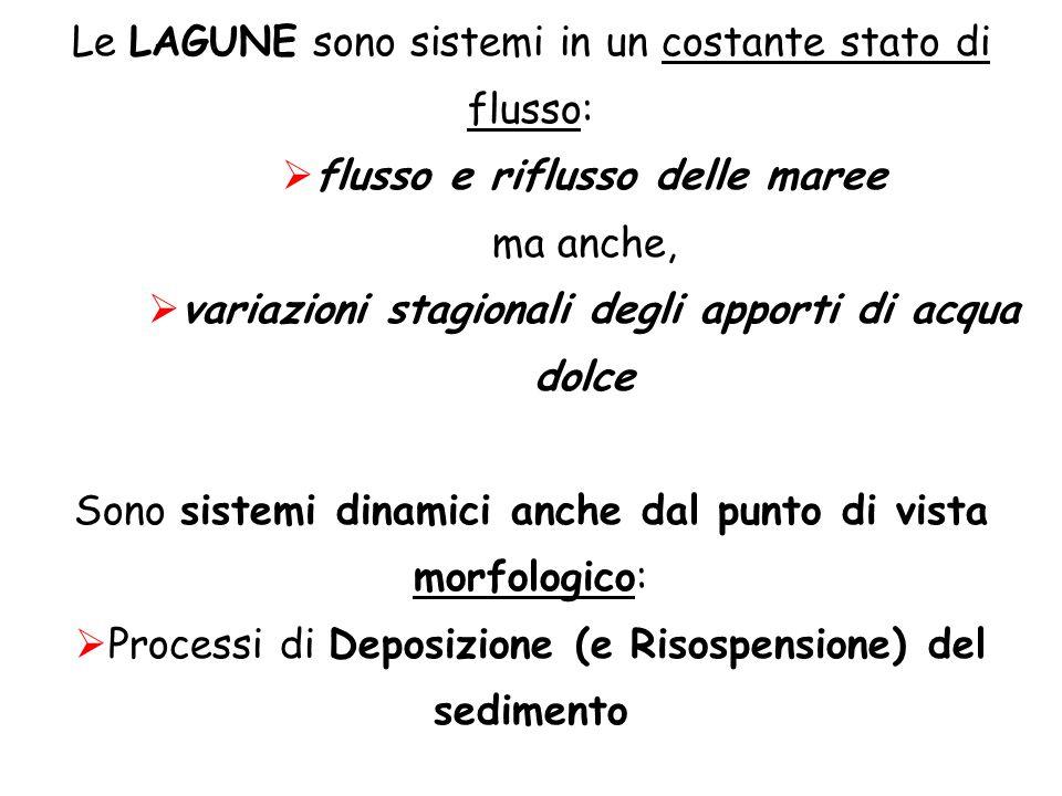 Le LAGUNE sono sistemi in un costante stato di flusso: