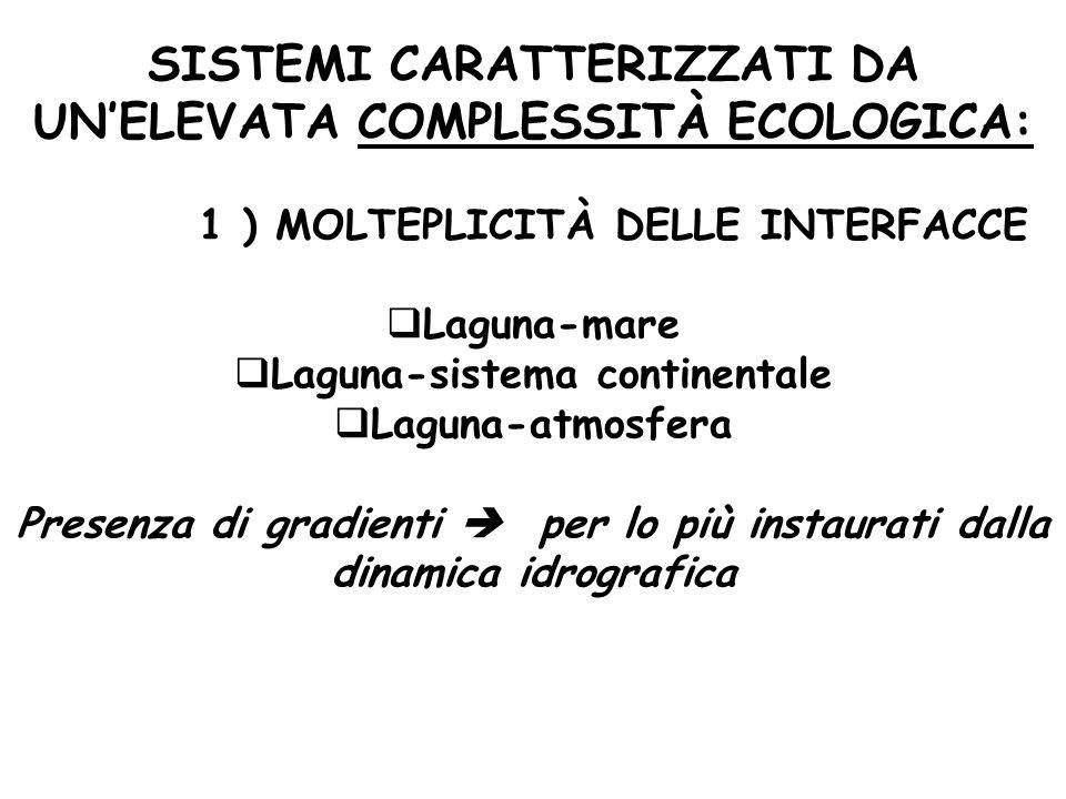 1 ) MOLTEPLICITÀ DELLE INTERFACCE Laguna-sistema continentale