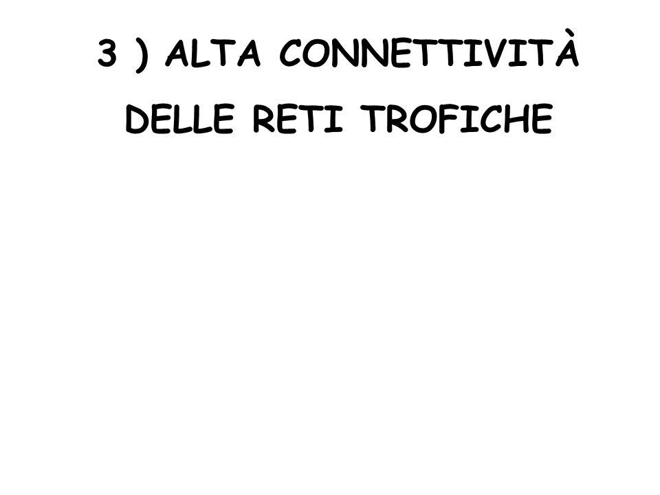 3 ) ALTA CONNETTIVITÀ DELLE RETI TROFICHE