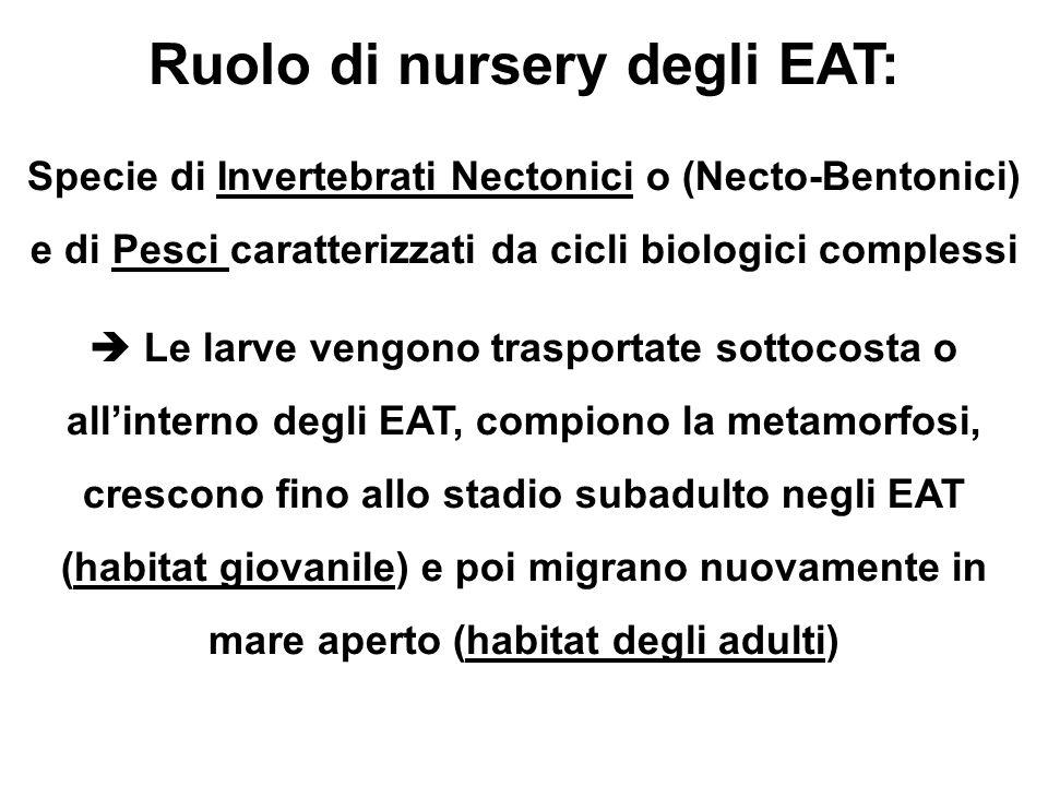 Ruolo di nursery degli EAT: