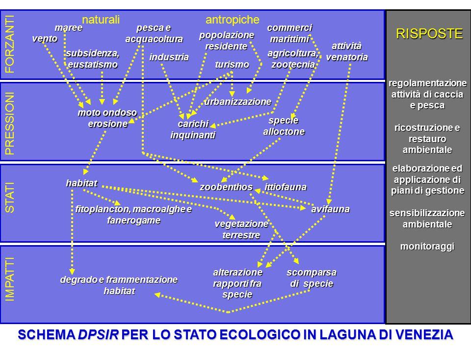 popolazione residente subsidenza, eustatismo agricoltura, zootecnia