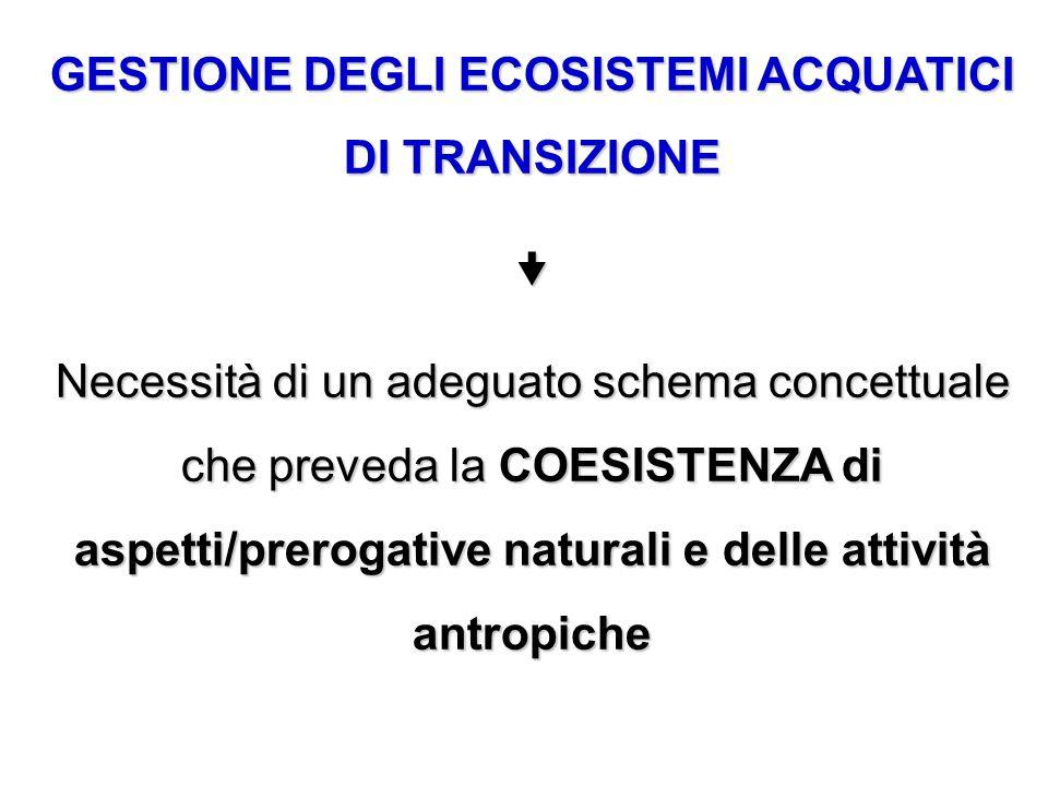 GESTIONE DEGLI ECOSISTEMI ACQUATICI DI TRANSIZIONE