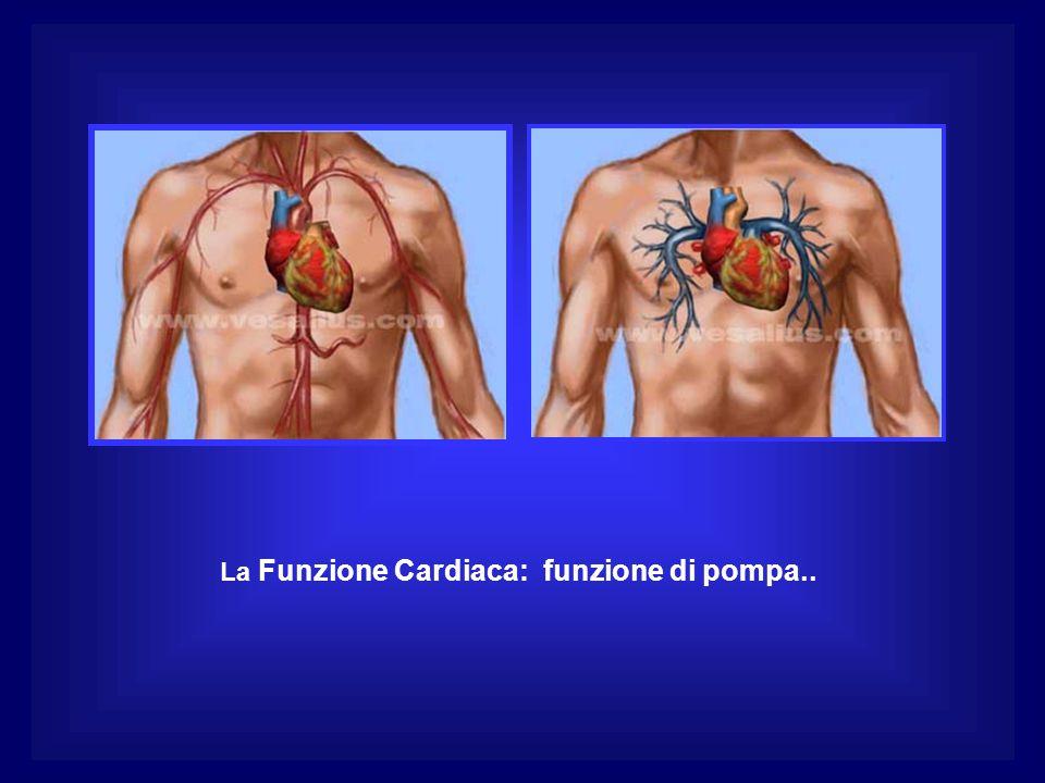 La Funzione Cardiaca: funzione di pompa..