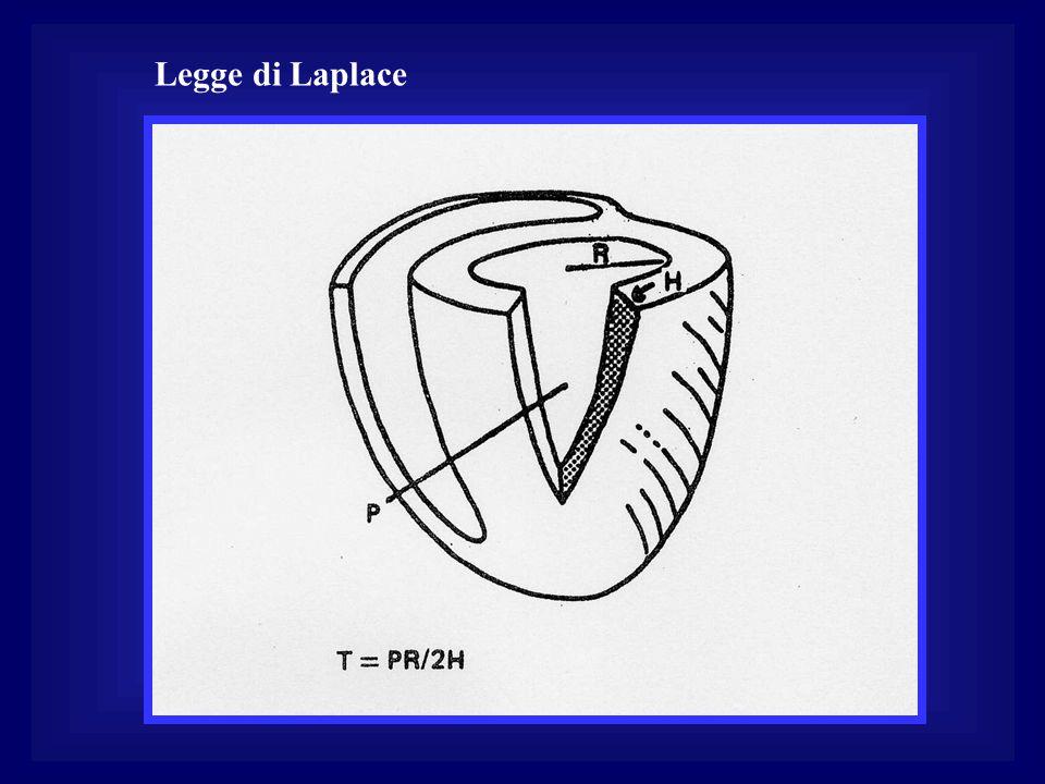 Legge di Laplace