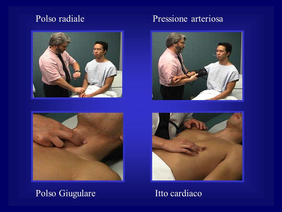 Polso radiale Pressione arteriosa Polso Giugulare Itto cardiaco