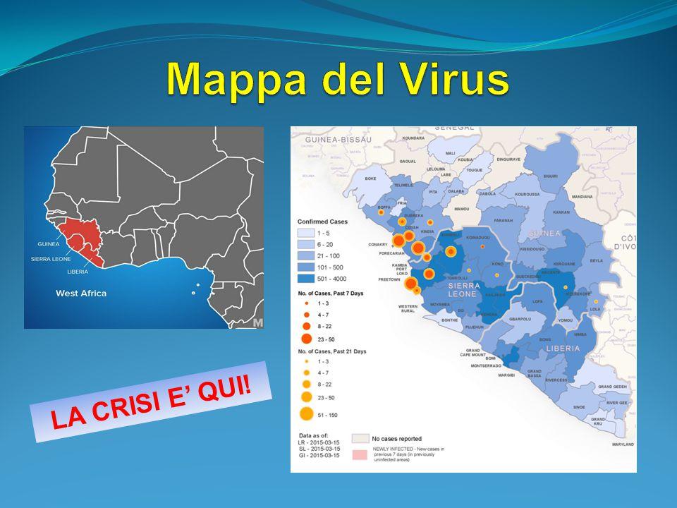 Mappa del Virus LA CRISI E' QUI!