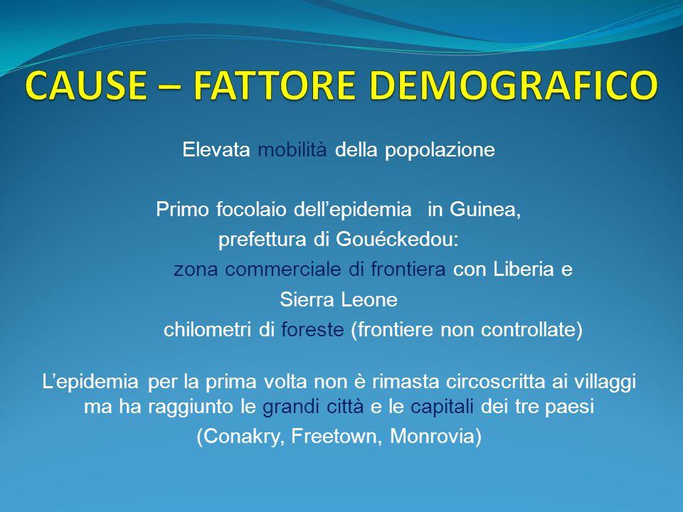 CAUSE – FATTORE DEMOGRAFICO