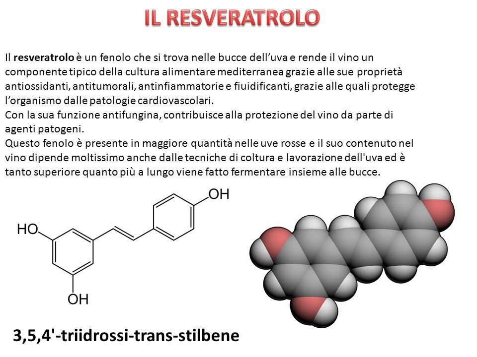 IL RESVERATROLO 3,5,4 -triidrossi-trans-stilbene