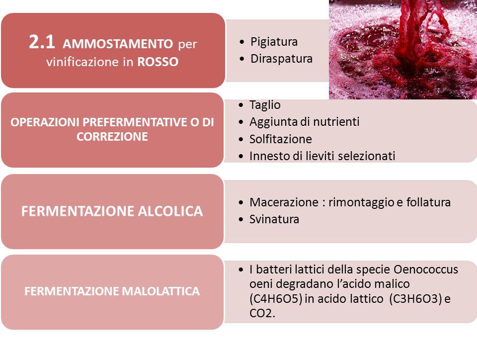 2.1 AMMOSTAMENTO per vinificazione in ROSSO