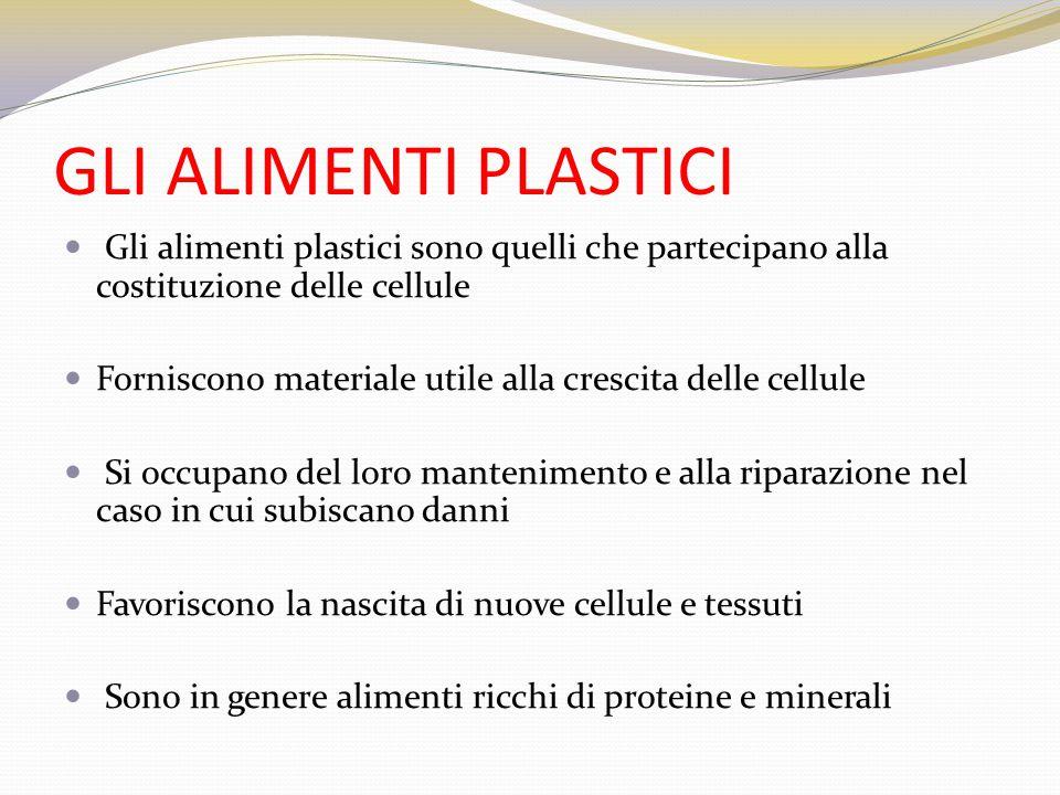 GLI ALIMENTI PLASTICI Gli alimenti plastici sono quelli che partecipano alla costituzione delle cellule.