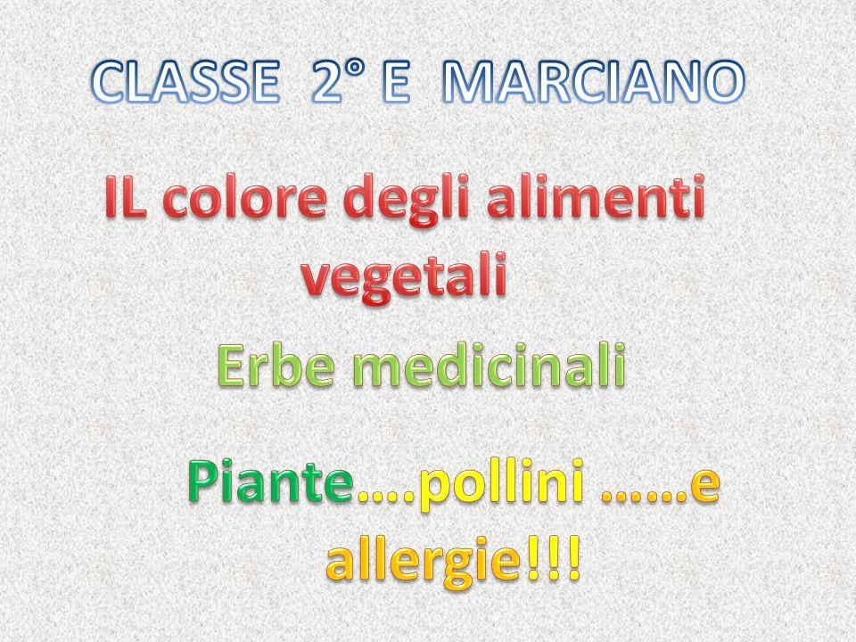 IL colore degli alimenti vegetali Piante….pollini ……e allergie!!!