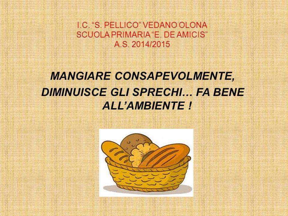 I. C. S. PELLICO VEDANO OLONA SCUOLA PRIMARIA E. DE AMICIS A. S
