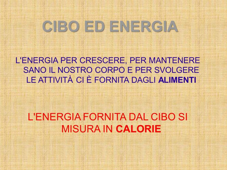 L ENERGIA FORNITA DAL CIBO SI MISURA IN CALORIE
