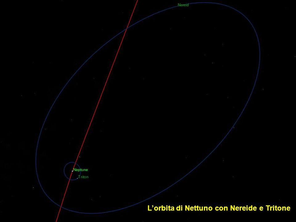L'orbita di Nettuno con Nereide e Tritone