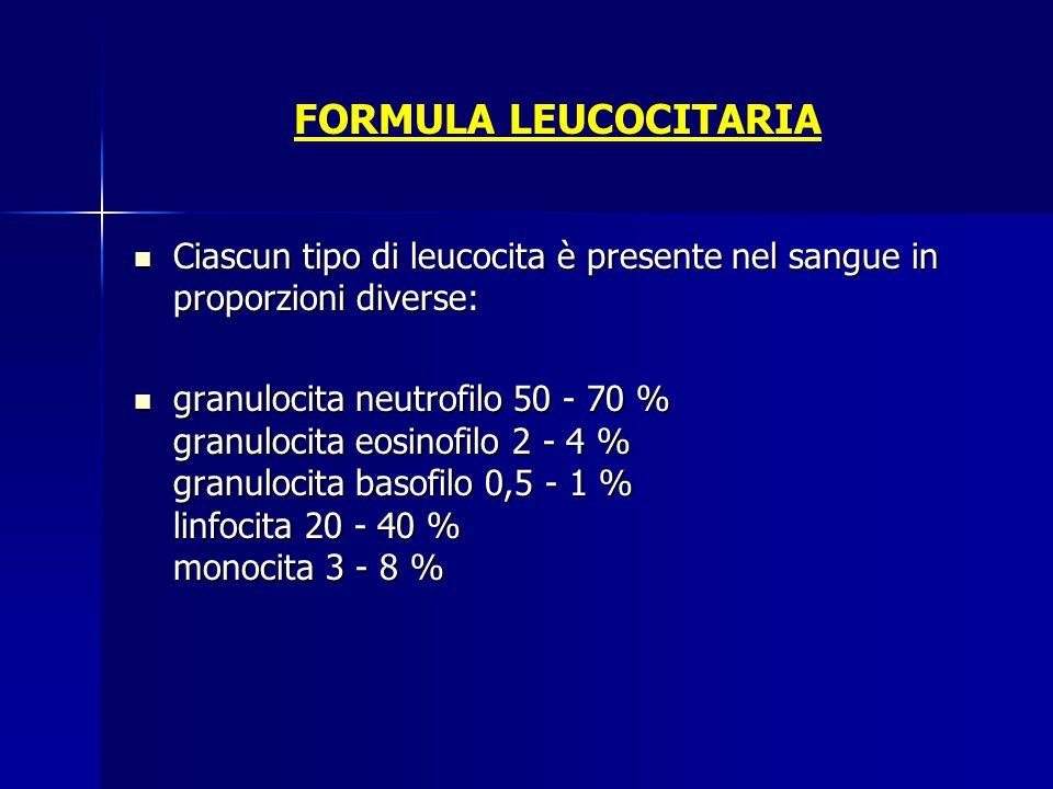 FORMULA LEUCOCITARIA Ciascun tipo di leucocita è presente nel sangue in proporzioni diverse: