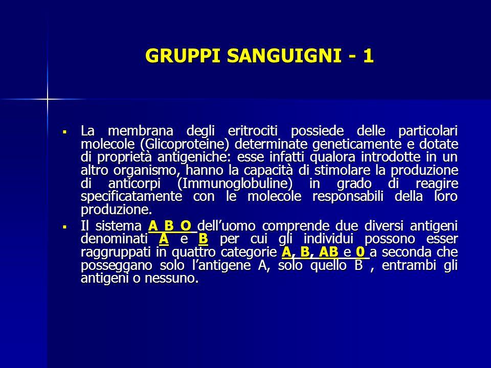 GRUPPI SANGUIGNI - 1