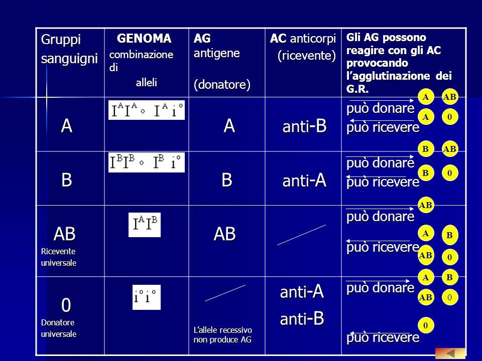 Gruppi sanguigni può donare può ricevere GENOMA AG antigene (donatore)