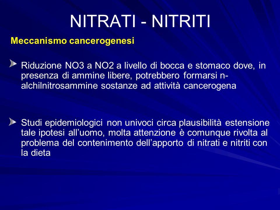 NITRATI - NITRITI Meccanismo cancerogenesi