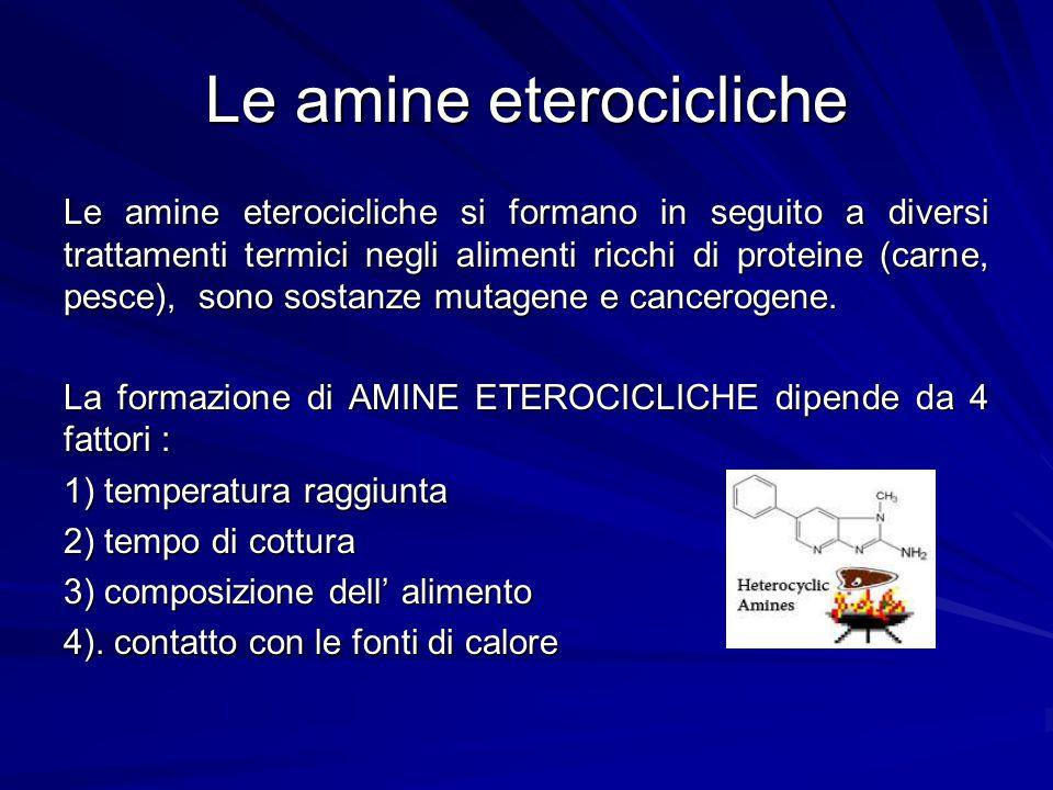 Le amine eterocicliche