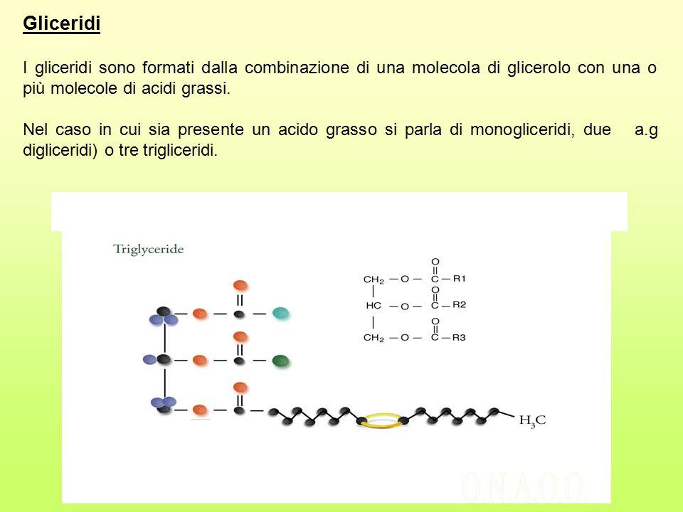 Gliceridi I gliceridi sono formati dalla combinazione di una molecola di glicerolo con una o più molecole di acidi grassi.
