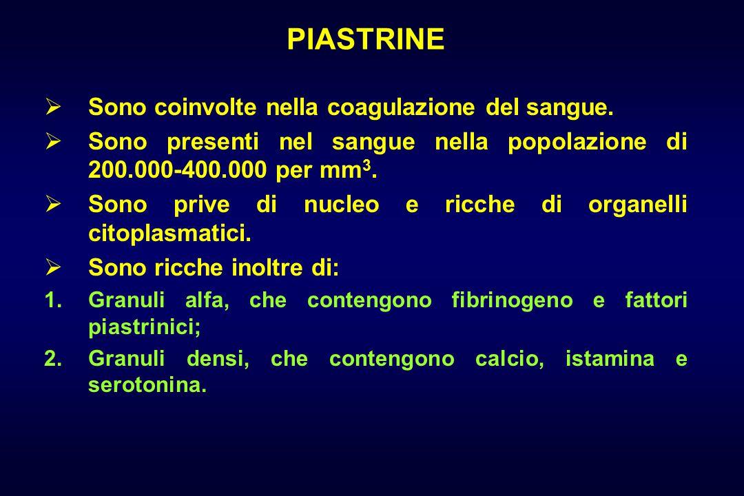 PIASTRINE Sono coinvolte nella coagulazione del sangue.