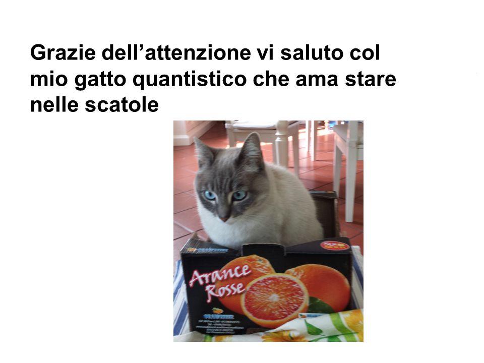 Grazie dell'attenzione vi saluto col mio gatto quantistico che ama stare nelle scatole