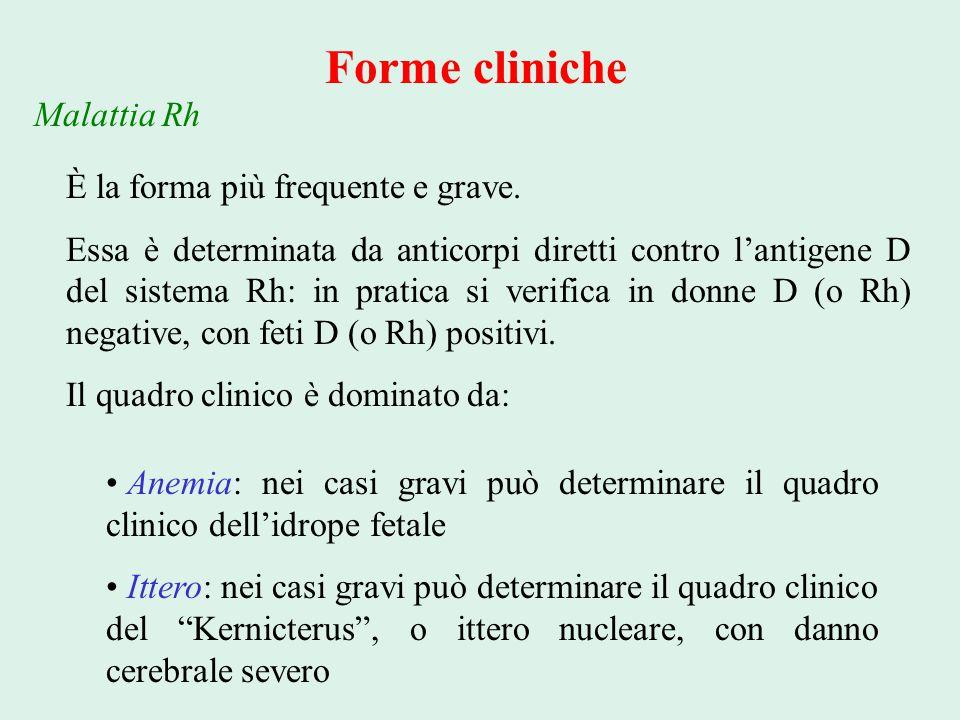 Forme cliniche Malattia Rh È la forma più frequente e grave.