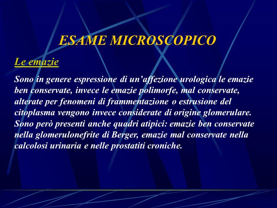 ESAME MICROSCOPICO Le emazie