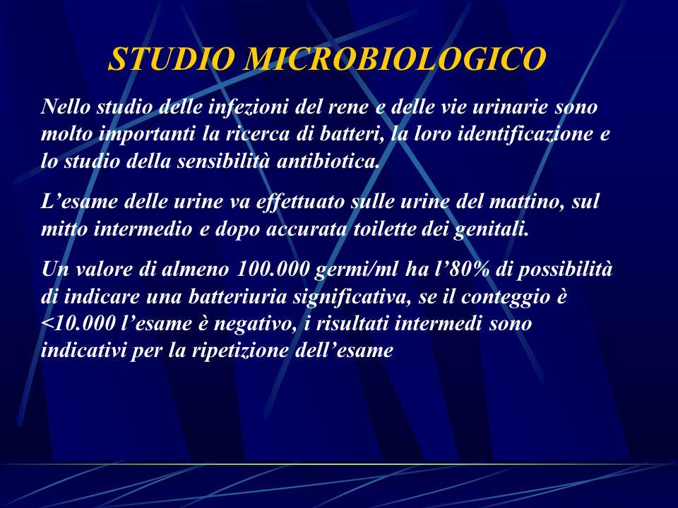 STUDIO MICROBIOLOGICO