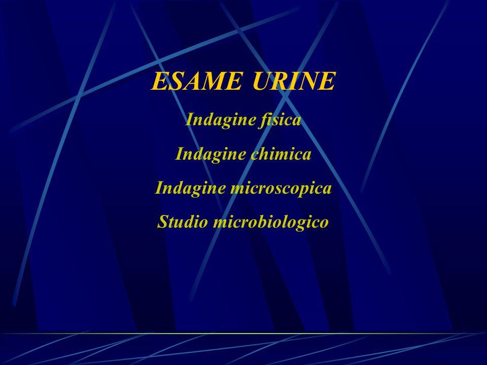 Indagine microscopica Studio microbiologico