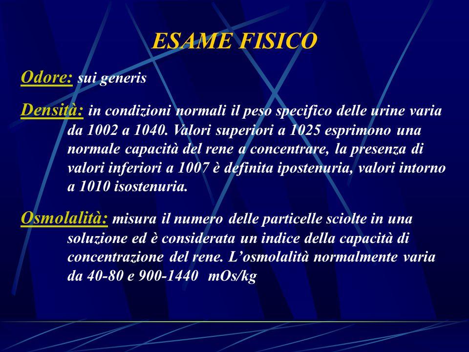 ESAME FISICO Odore: sui generis