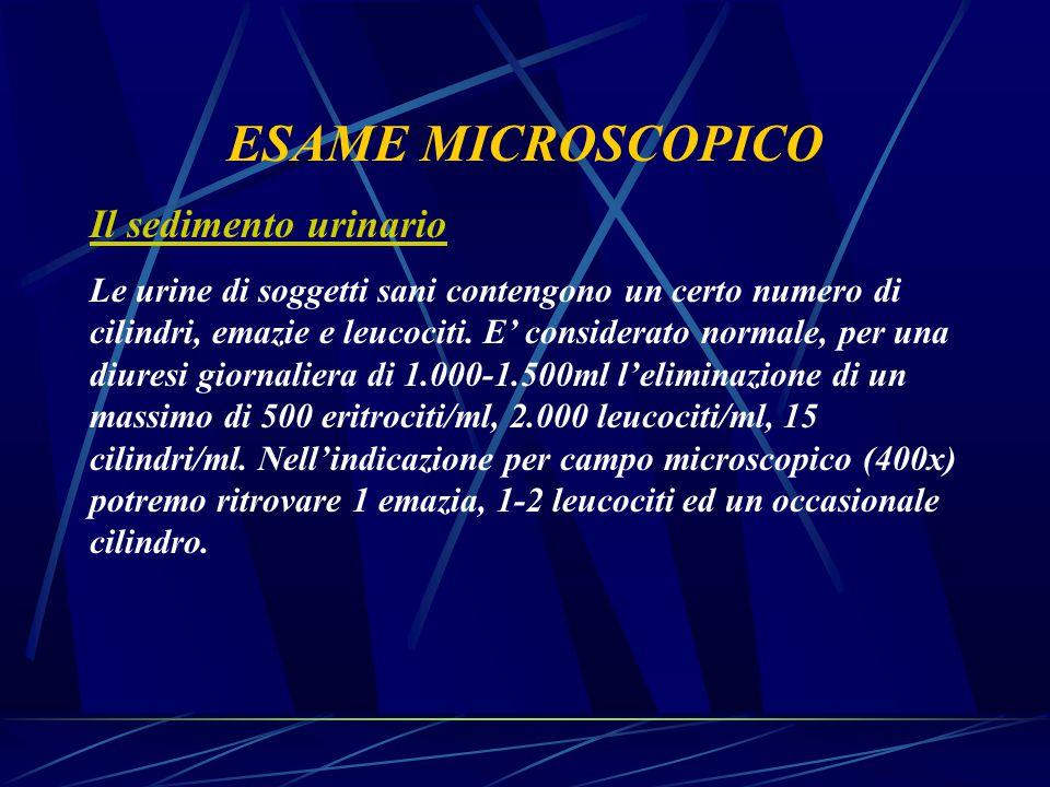 ESAME MICROSCOPICO Il sedimento urinario