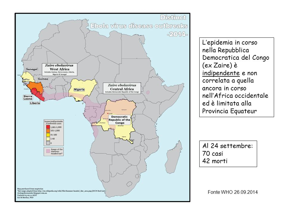 L'epidemia in corso nella Repubblica Democratica del Congo (ex Zaire) è indipendente e non correlata a quella ancora in corso nell'Africa occidentale ed è limitata alla Provincia Equateur