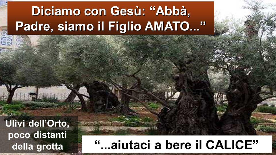 Diciamo con Gesù: Abbà, Padre, siamo il Figlio AMATO...