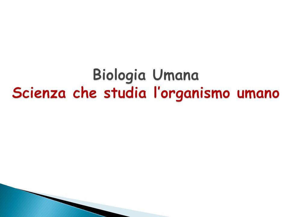 Biologia Umana Scienza che studia l'organismo umano