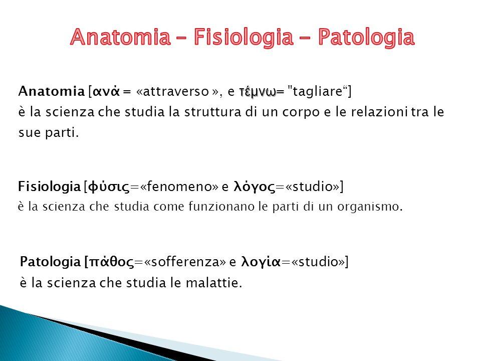 Anatomia – Fisiologia - Patologia