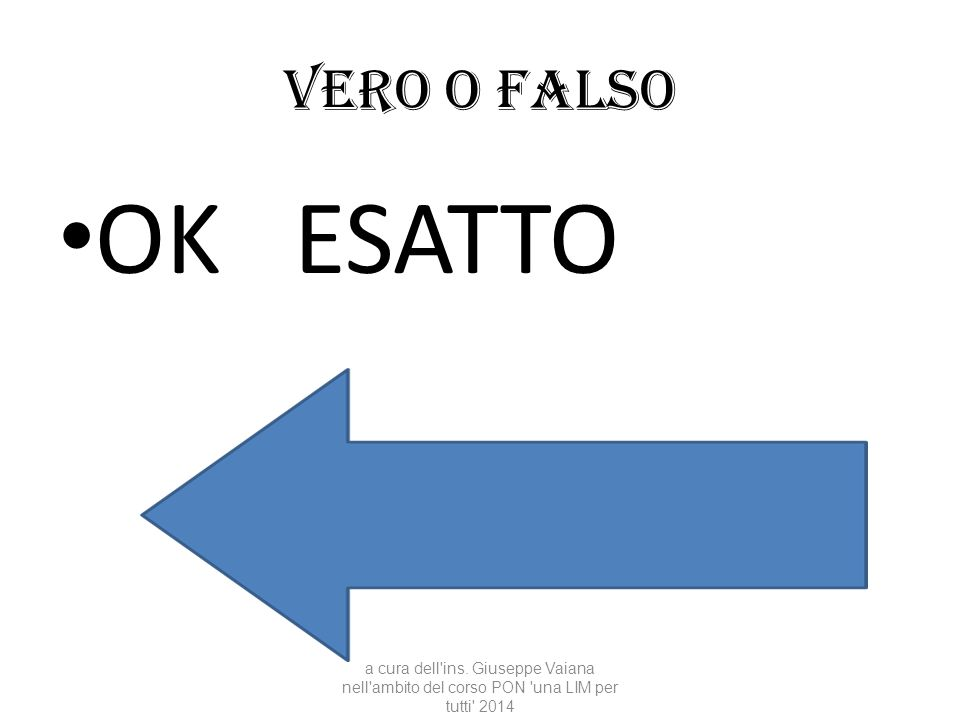Vero o falso OK ESATTO. a cura dell ins.